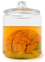 brain-in-a-jar.jpg
