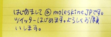 moleskinejp1.png