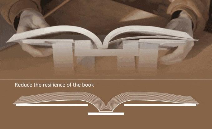 bookllign-back.jpg